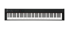 Korg D1 Stage Piano Sort